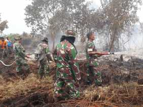 Dandim 0321 Rohil Pimpin Pemadaman dan Pendinginan Karhutla di Mamugo