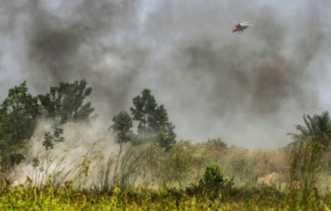 Kabut Asap Tebal, Jarak Pandang di Dumai Hanya 5 Kilometer