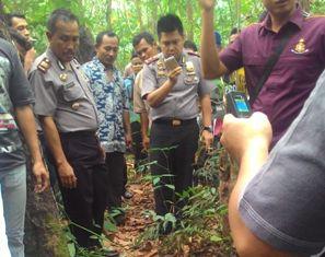 Warga Baganbatu Rohil Tewas Tergantung di Pohon Kareti